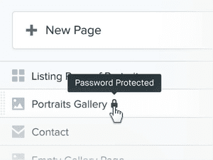 Photography Portfolio private password protected pages