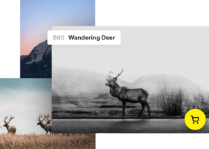 Photos of wandering deer for $60
