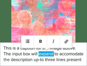 Illustrator Portfolio easy editing wysiwyg
